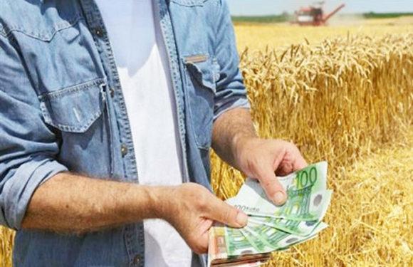 Πανωτόκια σε αγροτικά δάνεια  (Πρώτα βγαίνει η ψυχή και μετά το χούι…)